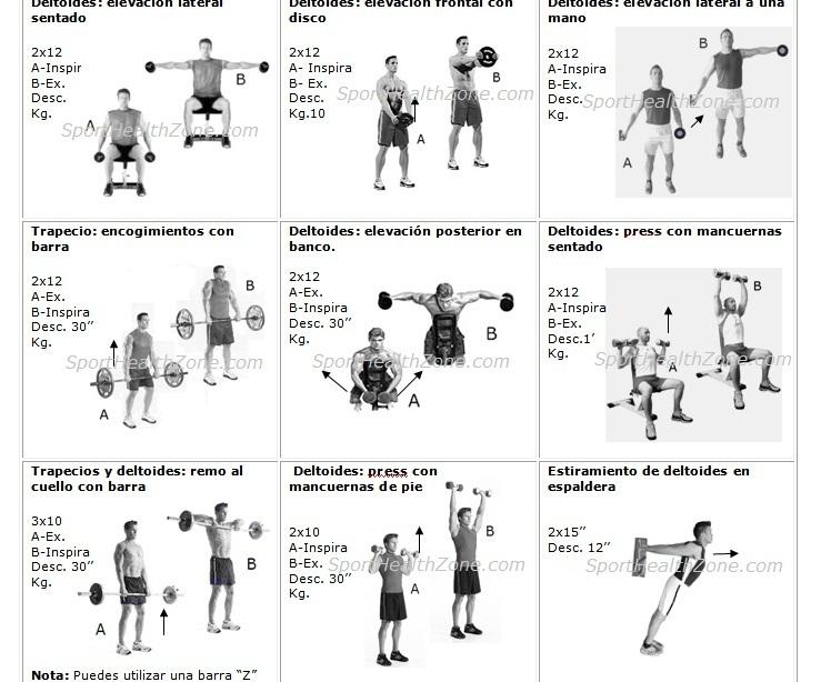 Como preparar buenas rutinas de gimnasio for Rutinas gimnasio