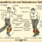 Como puedo aumentar la testosterona naturalmente – consejos nutricionales y suplementacion