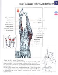 el mejor ejercicio para espalda