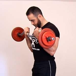 curl_biceps_barra_z