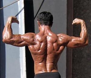espalda masa muscular