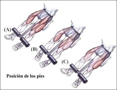 extension de cuadriceps