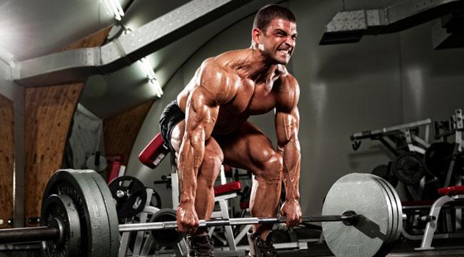 rutina ejercicios para volumen muscular