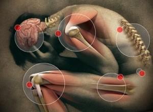 evitar el dolor articular al ganar musculo