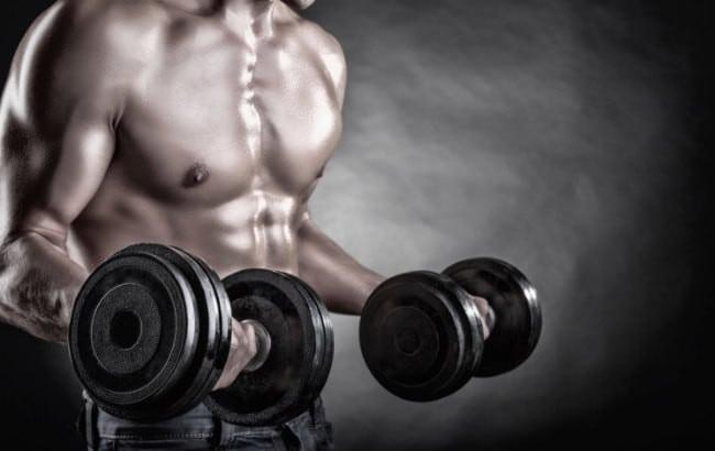 definciión muscular