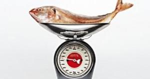 proteina y masa muscular