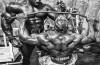 Rutinas para masa muscular