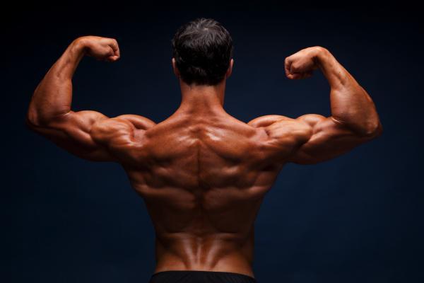 alimentos que aumentan la masa muscular