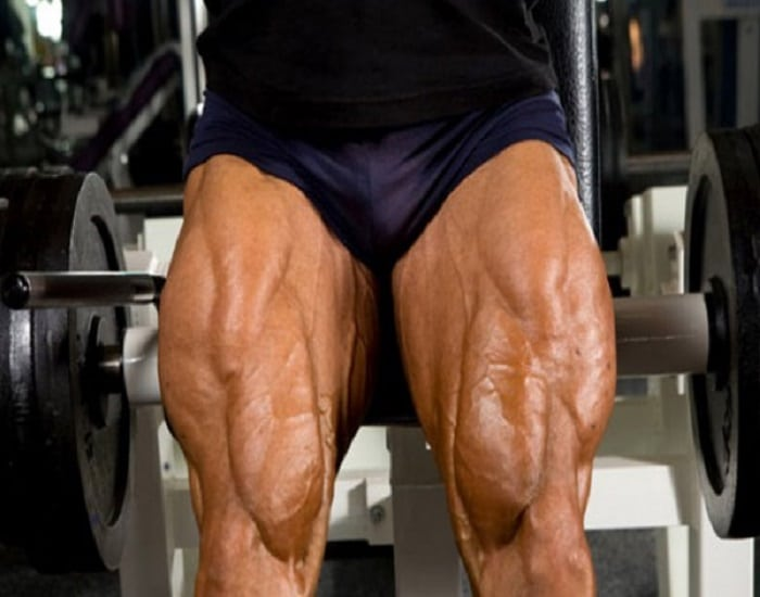 cuadriceps, pierna, consejos, entrenamientos,