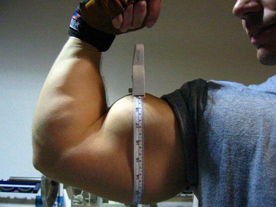 rutina de ejercicios para brazos
