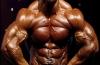 ejercicios para bíceps y tríceps