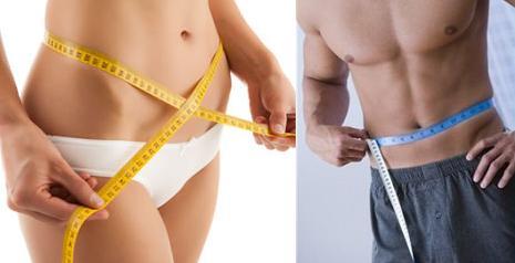 programa de perdida de grasa