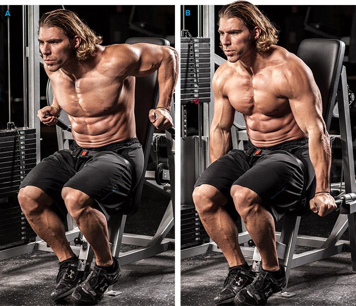entrenamiento de triceps