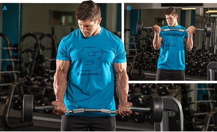 desarrollar biceps