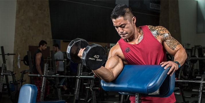 ganar musculos