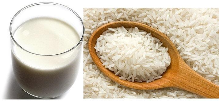 alternativas a la leche de vaca