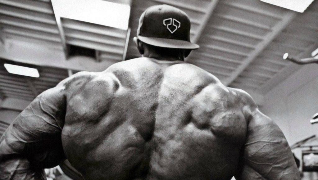 Leyes para entrenar espalda