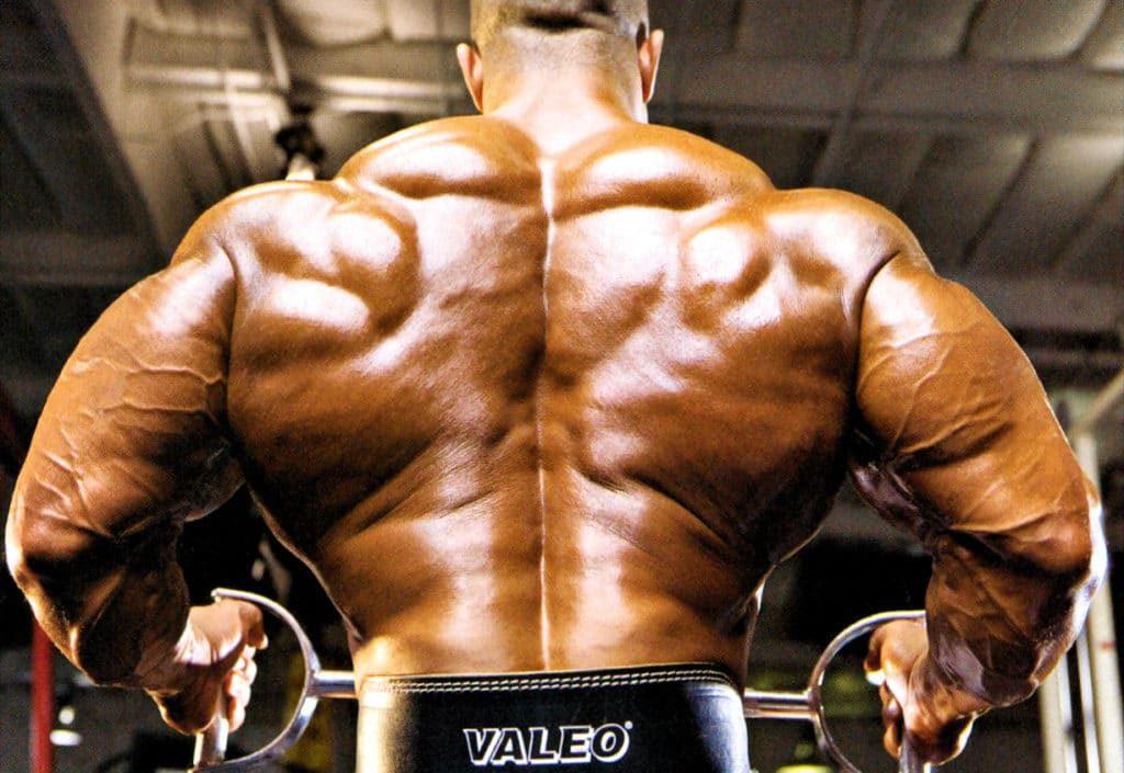Leyes para entrenar la espalda de forma correcta