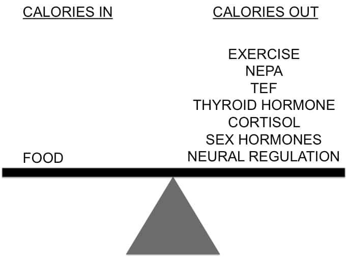calorie-balance