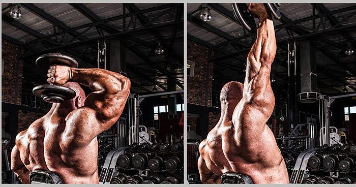 extension de triceps sentado
