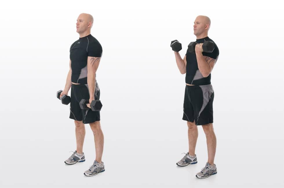 Entrenamiento para principiantes: Curl de bíceps