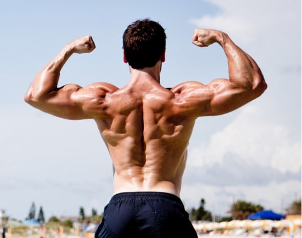 bíceps, entrenamiento de brazos