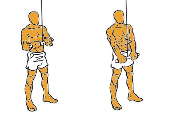 extensiones de triceps con barra