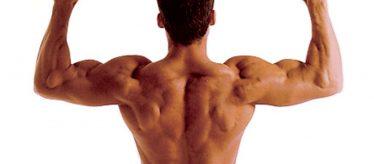 7 Movimientos para mejorar la fuerza corporal
