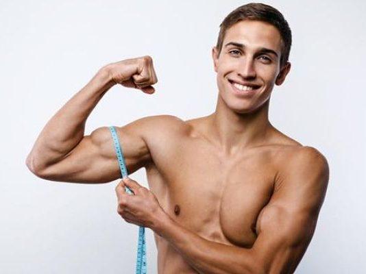 Guía de Bíceps: Anatomía, consejos y ejercicios