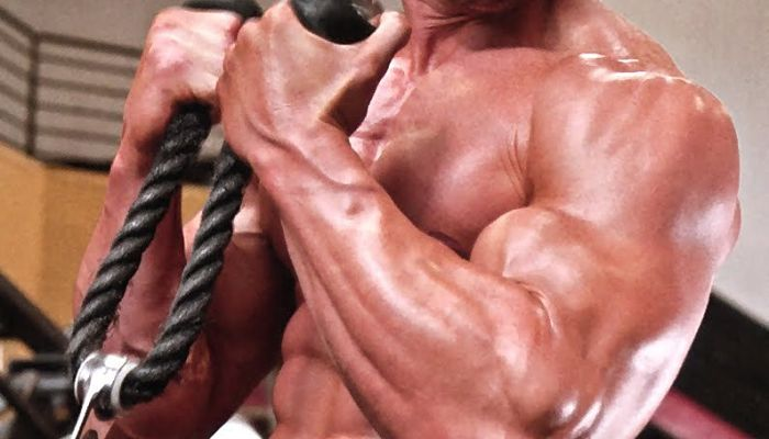 Aumento de los musculos