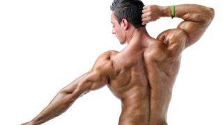 ¡Gana Más Músculos Con El Peso Ideal Para Ti Dentro Del Gimnasio!