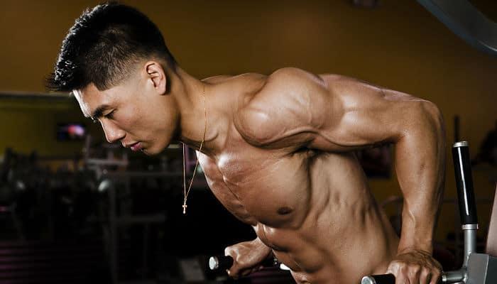 Sobre entrenamiento y la ganancia muscular