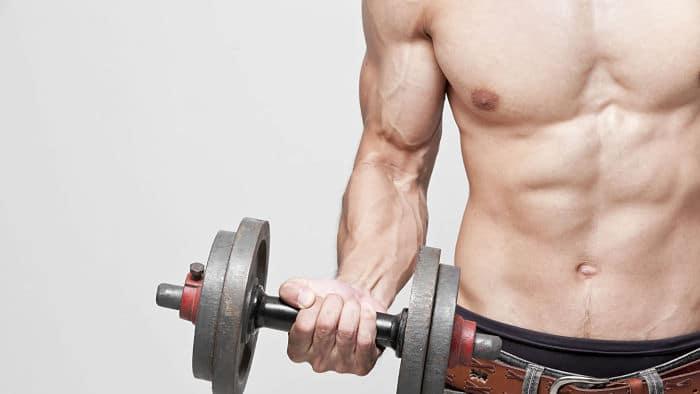Entrenamiento para los músculos