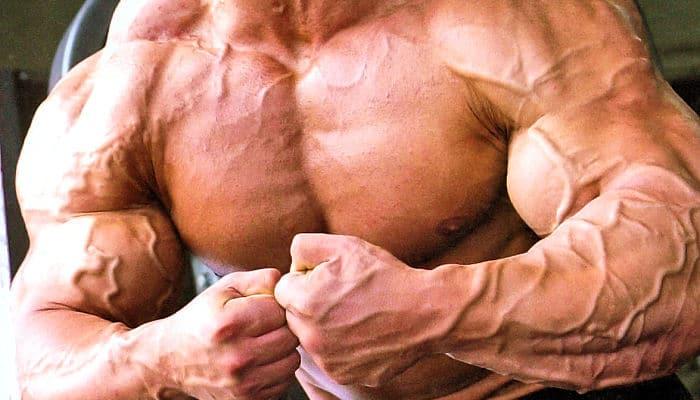 Desarrollo venoso y muscular