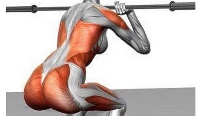 Estabilidad corporal