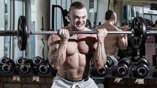 4 Principios Del Entrenamiento Específico De La Hipertrofia Muscular