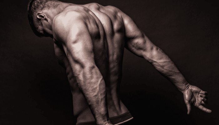Beneficios de la acupuntura en el fitness