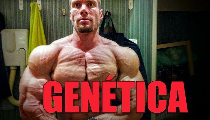 Buena genética para el culturismo