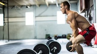 Desarrollo de los músculos magros
