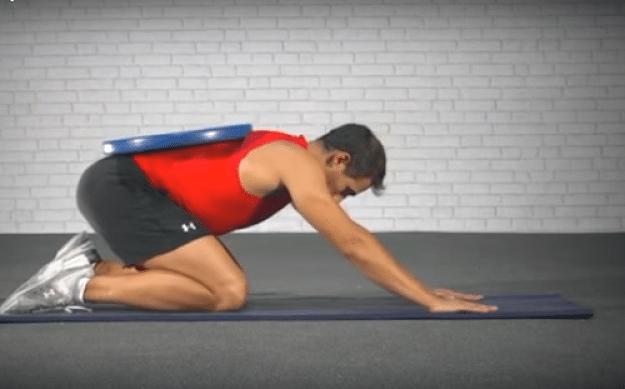 Músculos estabilizadores