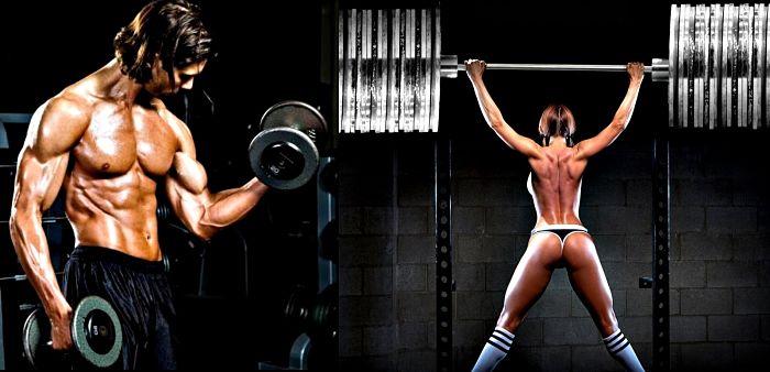 Entrenamientos fitness