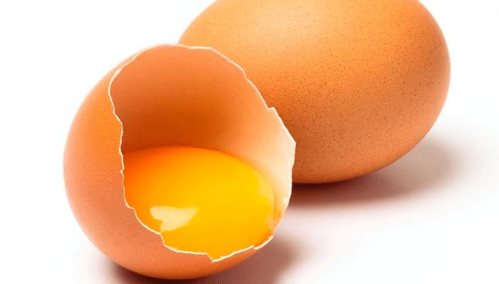 Alimentación con huevo