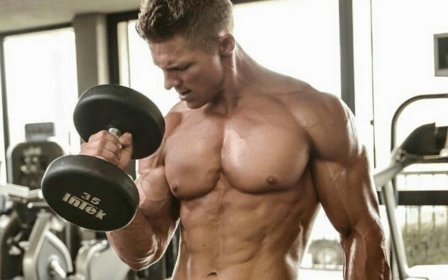 El Entrenamiento De Resistencia Y La Adaptación De Los Músculos.