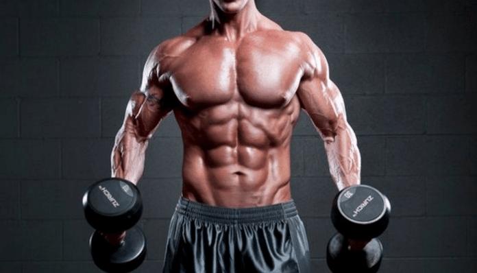 Hipertrofia de los músculos