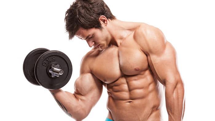 Hombre ejercitando el bicep unos de los tipos de fibras musculares que esta conformado