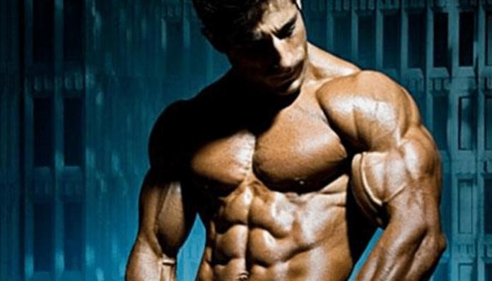 Construcción muscular