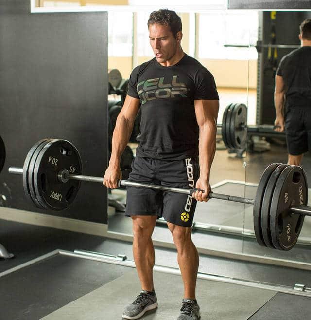 rutinas de ejercicios de espalda