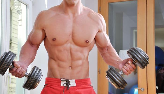 los aminoacidos musculos