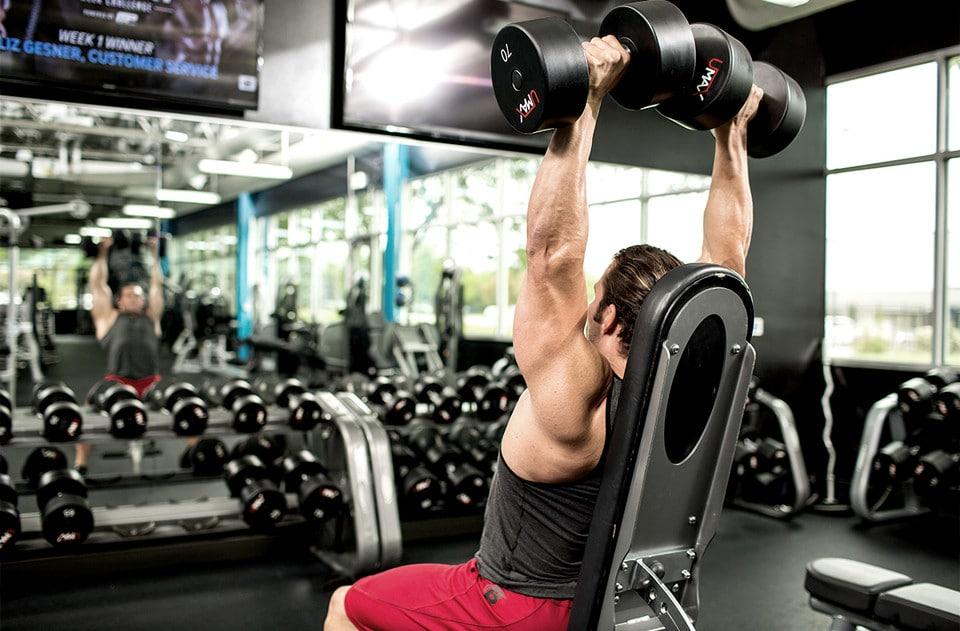 guía para obtener músculos